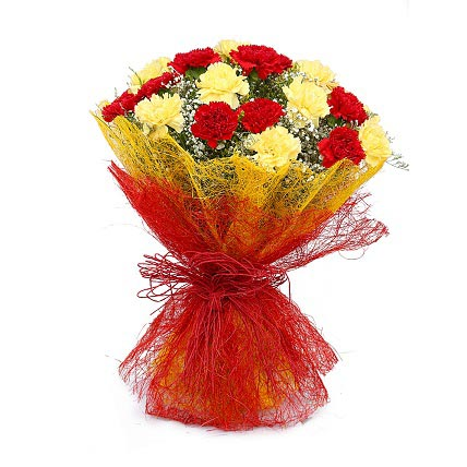 Angels – 15 Multi Colored Carnations