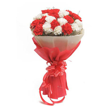 Goldia – 20 Red & White Carnations