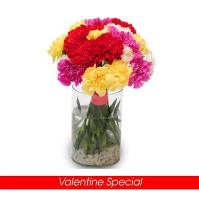 Colourful Carnations