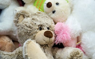 Teddy Day: Show the Tenderness of Your Love